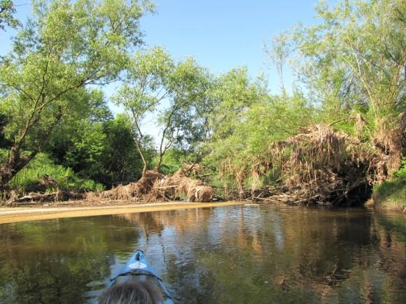 Krajobraz rzeki Sony