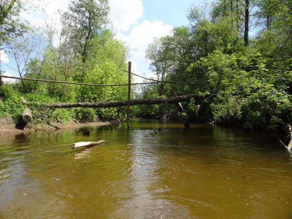 Przeprawa po drzewie przez rzekę Sone