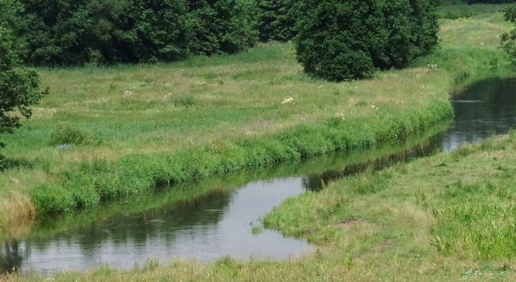 rzeka Gołdapa